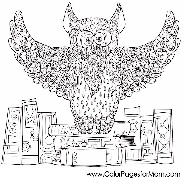 zentangle owl coloring pages - photo#23