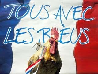 """Image copyright                  Getty Images                  Image caption                     """"Todos con los azules"""" se lee en el mensaje que acompaña al gallo """"más bonito"""" de Francia, """"P'Tit Claude"""", que fue la mascota de la selección en 2006. Diez años después, los gallos no serán bienvenidos en los estadios.   En el partido inaugural de la gran fiesta del fútbol europeo habrá jugadores con descendencia"""