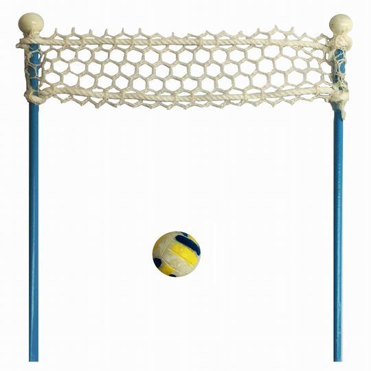 Miniature Beach Volley Ball Net with Ball By Celebrate It™