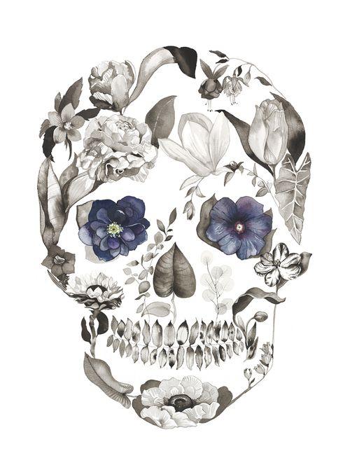 Hellebore by Sarah Voyer watercolor flower skull