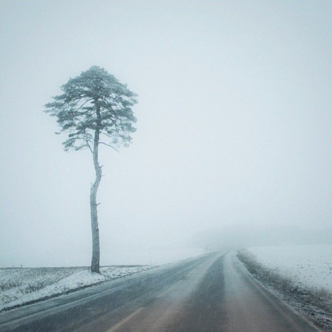 – What the fog, spør fotografen fra Østlandet. Landsdelen druknet i tåke ved starten av 2014.