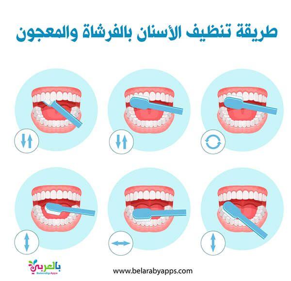 خطوات تنظيف الاسنان بالصور للاطفال الطريقة المثلى لتنظيف الأسنان بالفرشاة بالعربي نتعلم Cute Drawings Teeth Kids