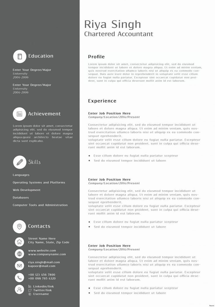 Accountant Resume Format in Word 2019 accountant resume