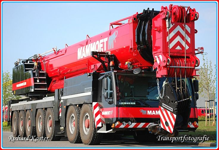 Https Www3 Vesalute Tractor Supply Index Cfm
