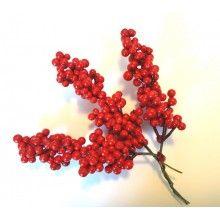 Fructe de Craciun 2