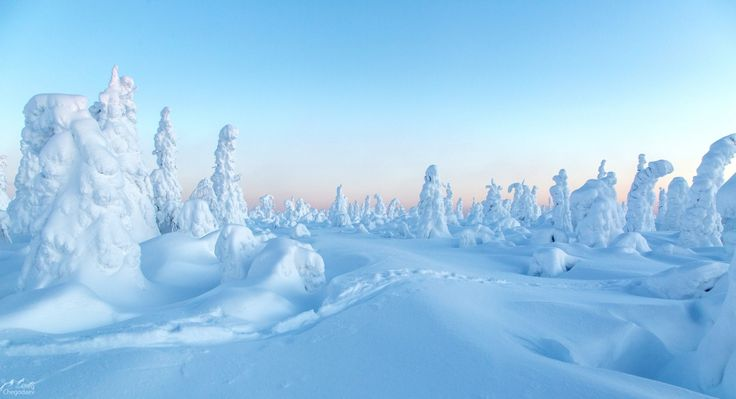 нежность северного урала — National Geographic Россия