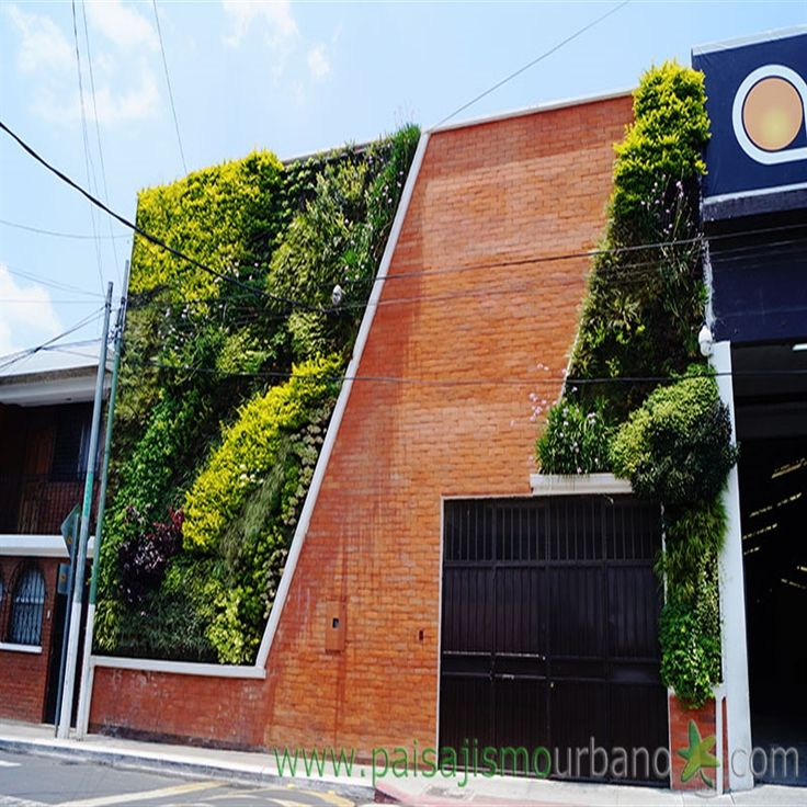 31 best images about jardines verticales en guatemala for Pinterest jardines verticales