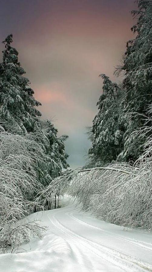 A winter drive in Vermont