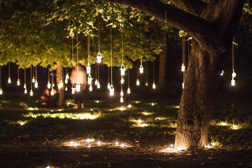 Mason jar lanterns hanging from trees on both sides of property. Wow...so so pretty!