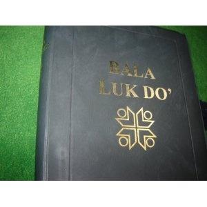 Bala Luk Do' LUN BAWANG BIBLE / Buri' Lun Bawang luk titen Buri' Lun Dayeh Teh / Borneo / LB 052P / Vinyl bound with Thumb Index   $89.99