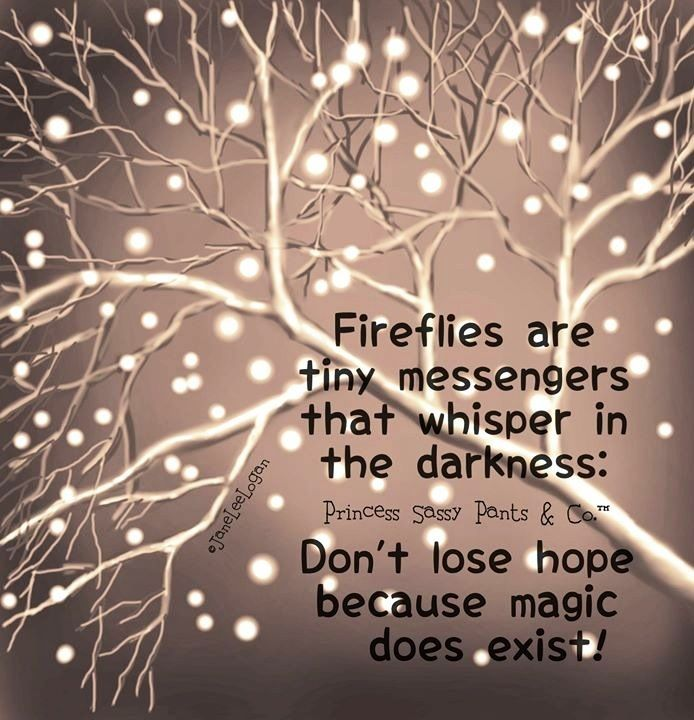 Fireflies and magic quote and illustration via www.Facebook.com/PrincessSassyPantsCo