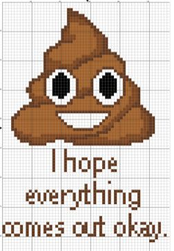 This cross stitch would make a great decoration for your bathroom. Its message reads, I hope everything comes out okay, below a smiling poop