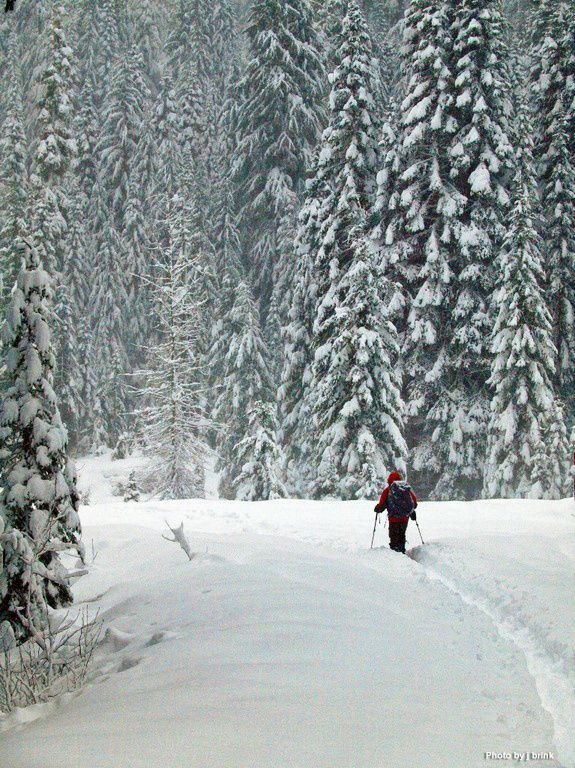 Get outside this winter! from key safety tips to great snowshoe ideas, our winter recreation guide will get you started. (photo by J Brink at Smithbrook near Steven's  Pass)