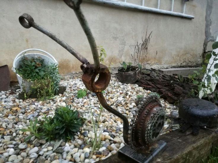 Terrain Snail