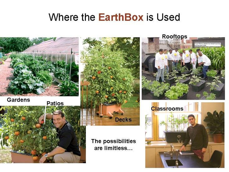 "Earth Boxes. ""Over the past 80 years, my family has grown literally tons of vegetables on our family farm. Our produce is shipped across the nation and around the world. We´ve made many scientific breakthroughs in growing technology during that time, but none compare to the breakthrough I´ve made with the EarthBox®: higher yields, minimum maintenance, and gardening that is simple and friendly to our environment."" - Blake Whisenant EarthBox® Inventor."