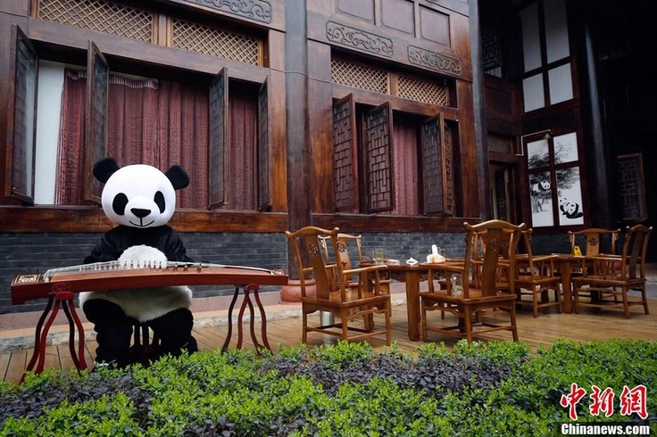 Can you guess whos the mascot of the hotel? (Source: CNS)