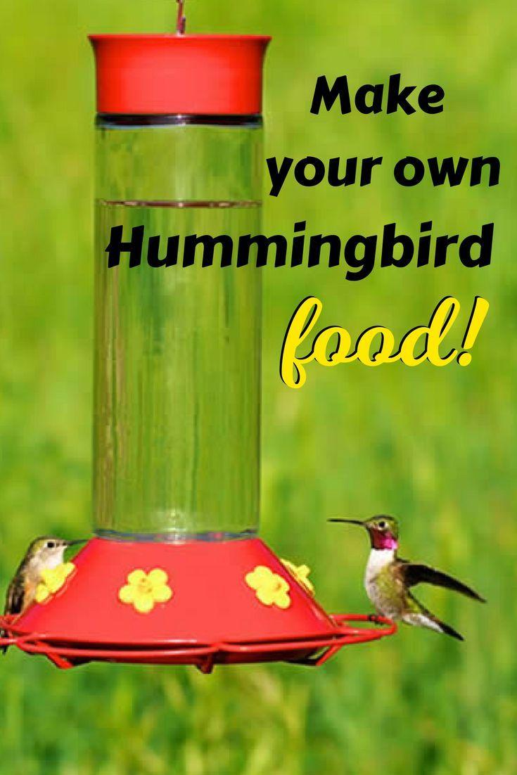 Homemade Hummingbird Food Recipe Hummingbird Food Homemade