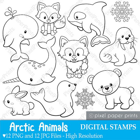 Arctic animals Digital Stamps Clipart por pixelpaperprints