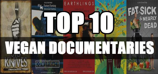 Documentaries are not just a means of entertainment. They are an effective medium to propagate your ideology, bring awareness in the society and take your cause before a wider audience. But it's no...