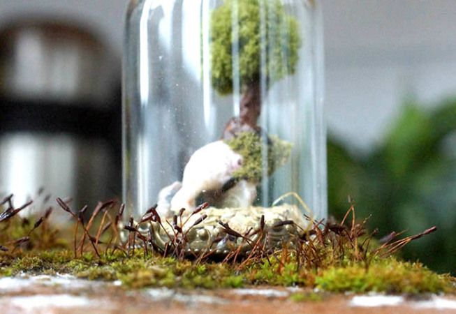 TinyLand #2 – Miniature glass bottle with green tree