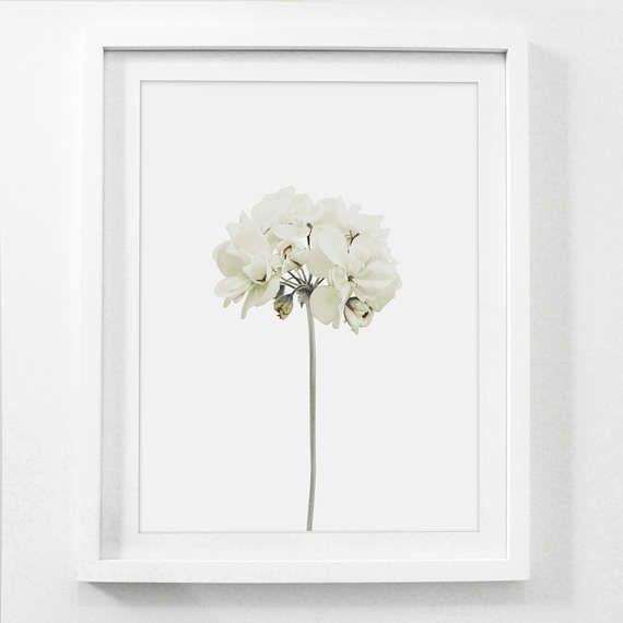 Flower Print White Flower Flower Art Print Spring Flowers