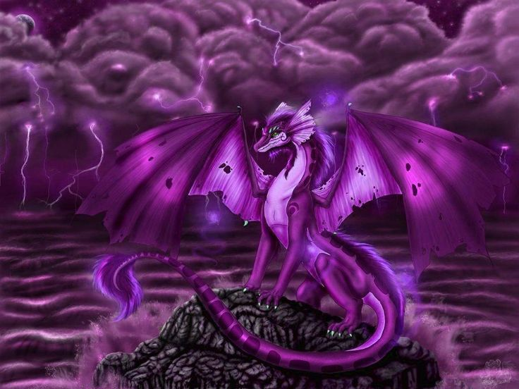 purple dragon wallpapers wallpaper cave dragons