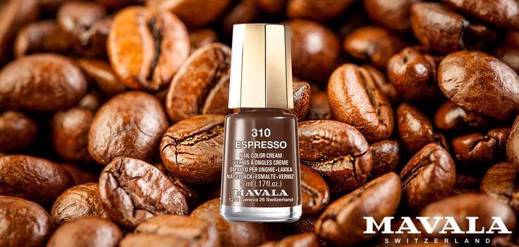 310 Espresso, un concentrato di eleganza color caffè!