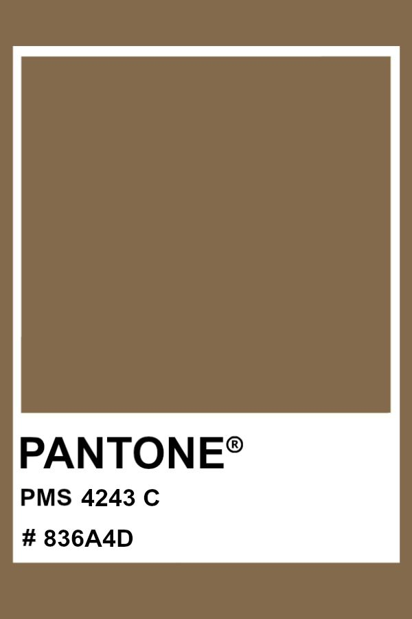 pantone 4243 c color pms hex em 2020 192c grays bridge stone