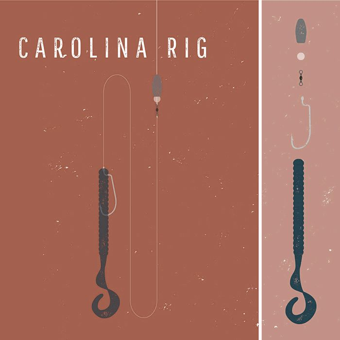 The carolina rig is similar to the texas rig except the for Texas rig bass fishing