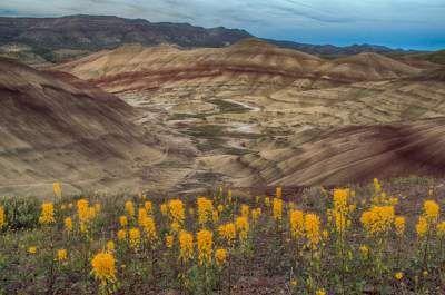 Восхитительная природа американского штата Орегон. Фото