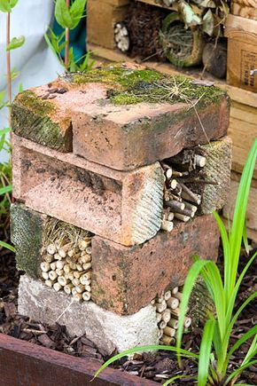 Arranging a few old bricks on top of each other makes a simple insect house with…