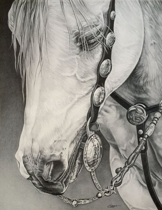 Gorgeous And Grand Graphite Art That Will Leave You Gasping - Bored Art