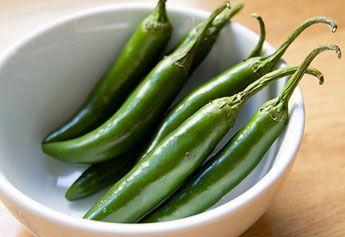 Cultivo de pimiento morron en mexico
