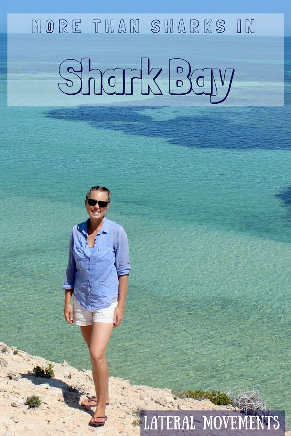 Shark Bay Pinterest pin
