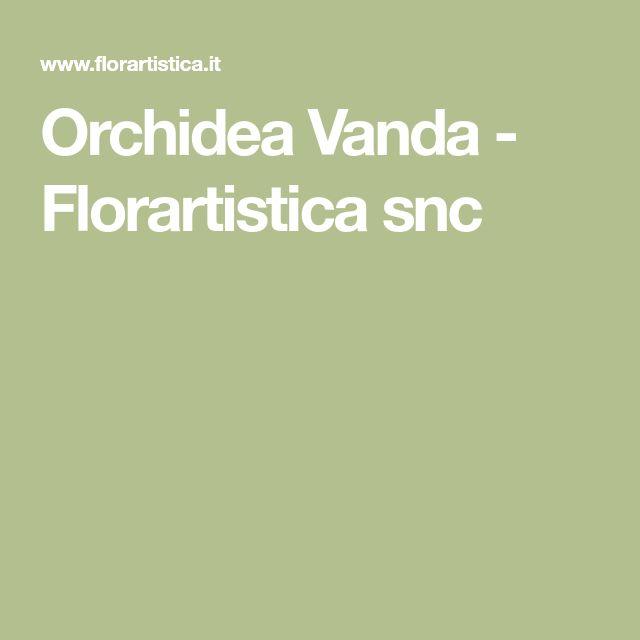 Orchidea Vanda - Florartistica snc