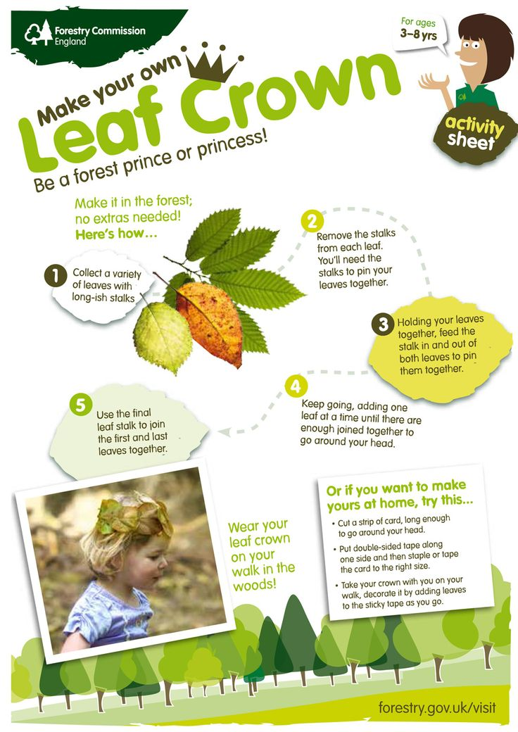 Make a leaf crown from autumn leaves collected on your trip to the woods. Download yours from http://www.forestry.gov.uk/forestry/INFD-9ALHFP.