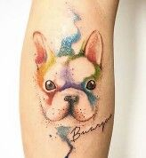 French bulldog watercolour tattoo