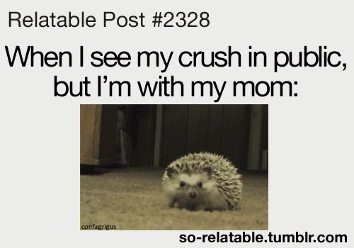 relatable gifs   Funny Relatable Posts About Crushes -----> that's so cute and accurate :D