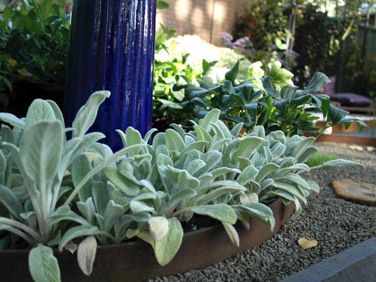 User Galleries   Formboss Metal Garden Edging For Lawns, Garden Beds And  Driveways