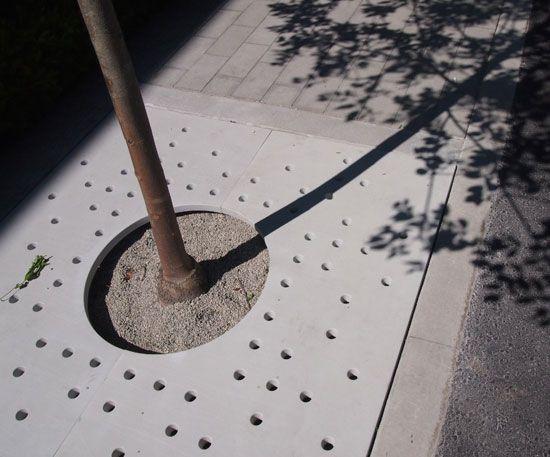 spirit_trail_vancouver concrete tree grate