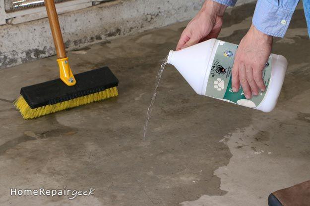 Pungent Dog Odor On Concrete