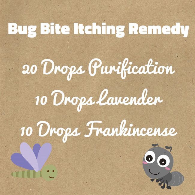 There is nothing worse than having a bite that won't stop itching. Then you scratch until you bleed & it still itches. Here is a homemade bug bite remedy.