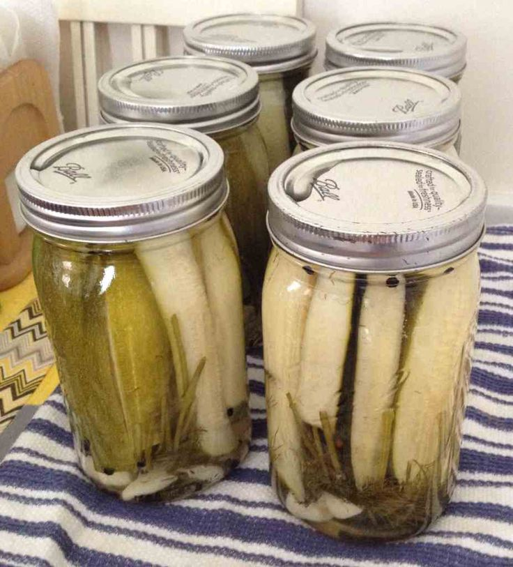 How to Make Dill Zucchini Pickles :http://www.financialforager.com/how-to-make-dill-zucchini-pickles/