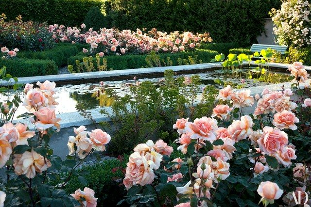 Pops of pink roses in Moncalieri, Italy | archdigest.com