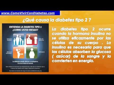 (13) Que es la diabetes mellitus tipo 2 | Diabetes Tipo 2 - YouTube