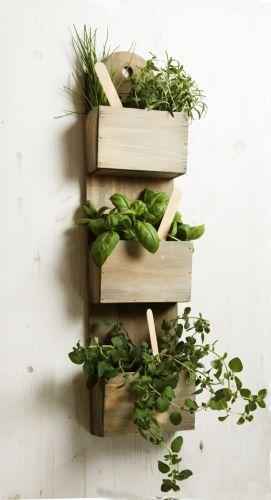 Best 25+ Herb Planters Ideas On Pinterest | Growing Herbs Indoors, Diy Herb  Garden And Growing Herbs In Pots