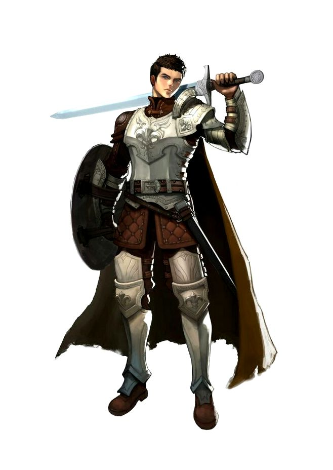 Male Human Sword and Shield with Armor Fighter ...