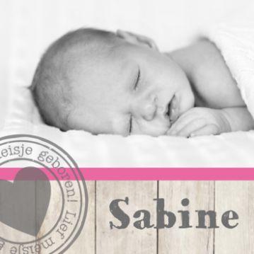 Trendy fotogeboortekaartje met takken, vlindertjes en roze balk met sloophout. Dit geboortekaartje met foto kun je zelf maken. Bestel een gratis drukproef van je ontwerp.