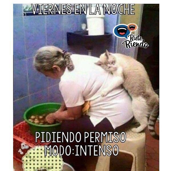 #instalike #instagood #jaja #friends #summer #jajaja #humor #chistes #risas #Colombia #Venezuela