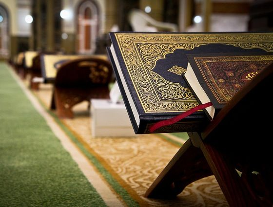 """is the quran a violent text or is your reading a tad off?"""